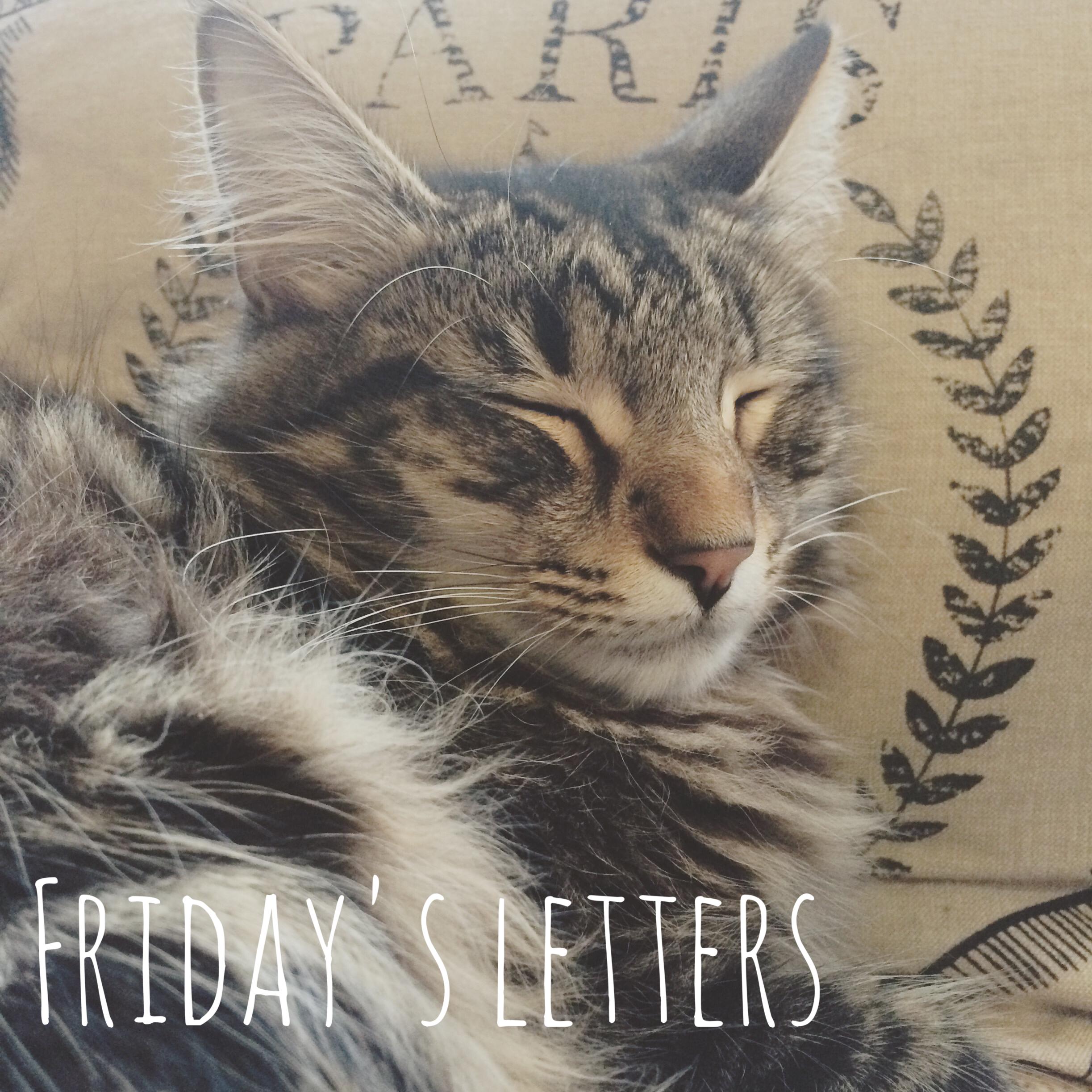 Friday's Letters myfoxycorner